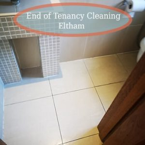 deep cleaning eltham